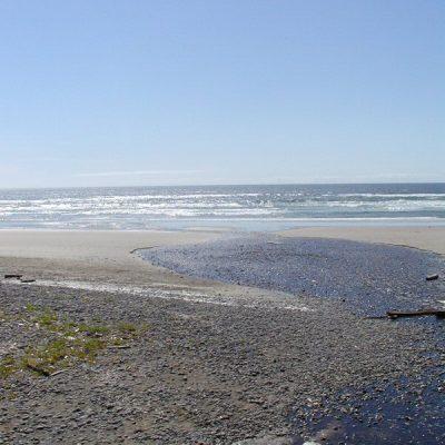 Beach Shot #5