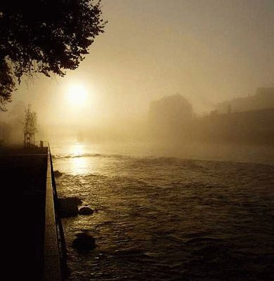 Misty River At Dawn