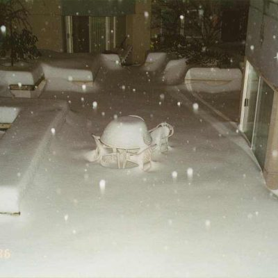 Snow Storm 96 in Seattle